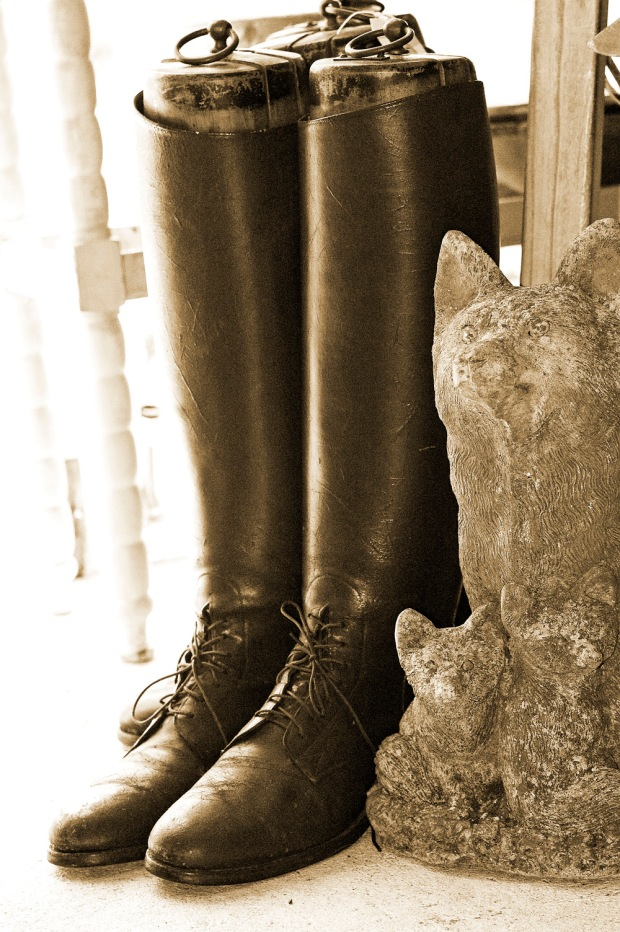Equestrian Boots - Copyright Anahi DeCanio for ArtyZen Studios